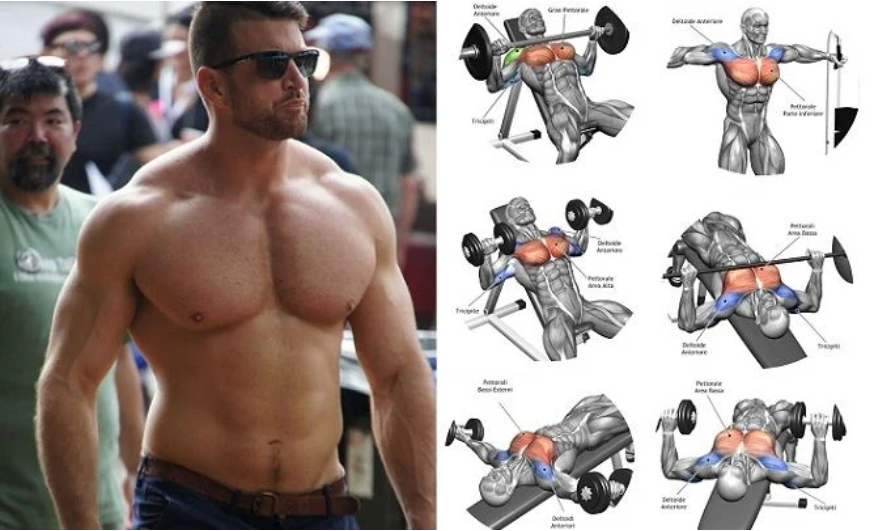 How To Create Monster Muscle Mass For Your Chest In Just 28 Days